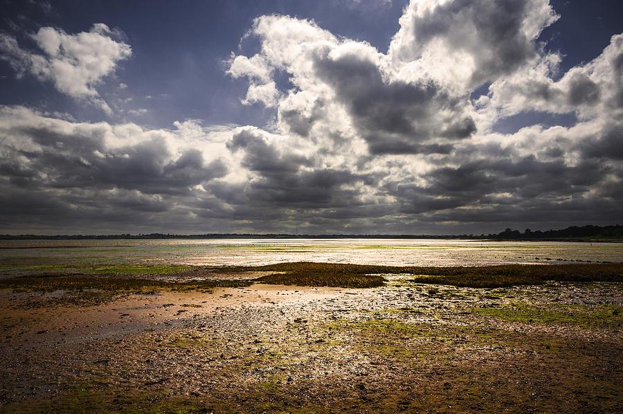 Bay Photograph - Shoreline by Svetlana Sewell