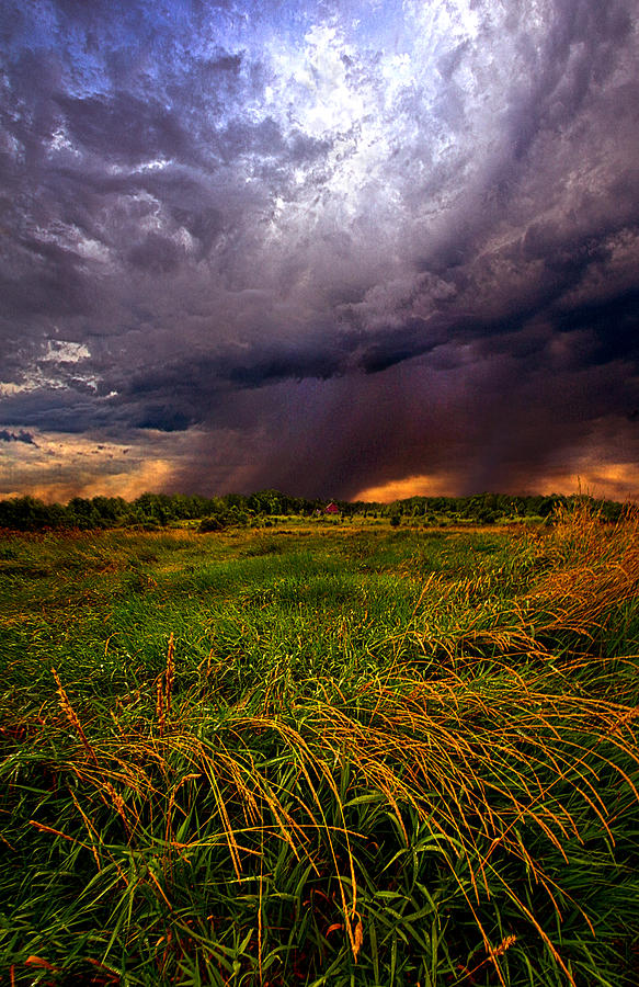 Shadows Photograph - Showers by Phil Koch