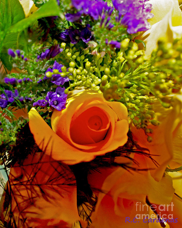 Rose Photograph - Simply Rose by Rebecca Christine Cardenas