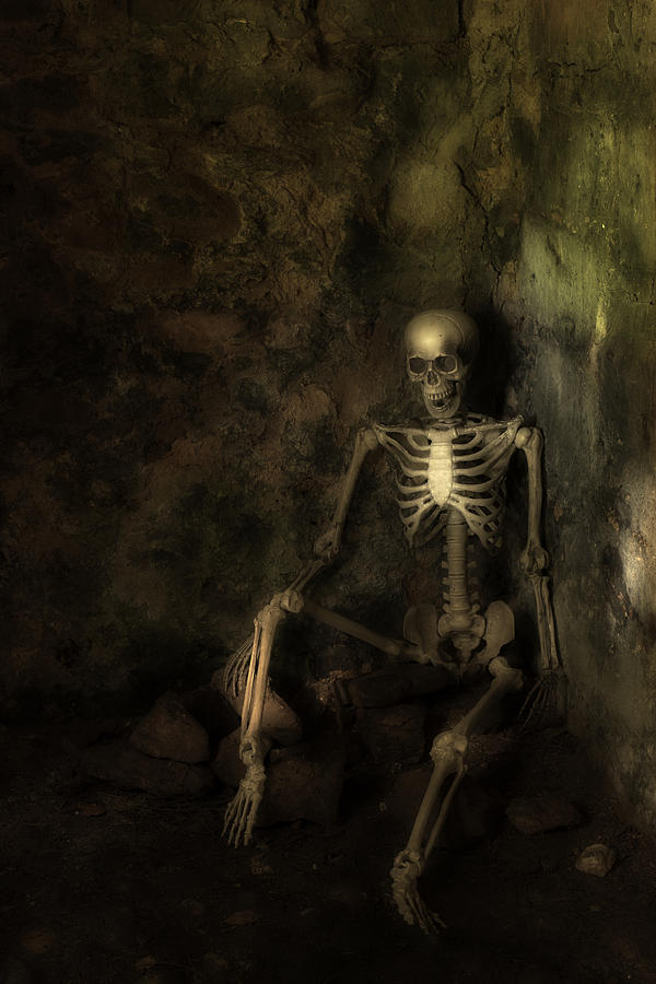 Skeleton Photograph - Skeleton by Amanda Elwell
