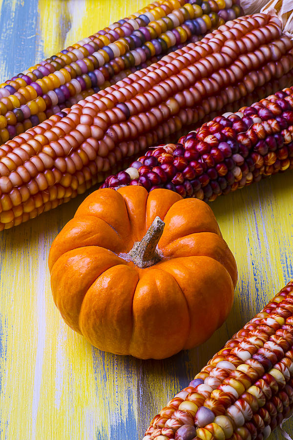 Indian Photograph - Small Pumpkin And Indian Corn by Garry Gay