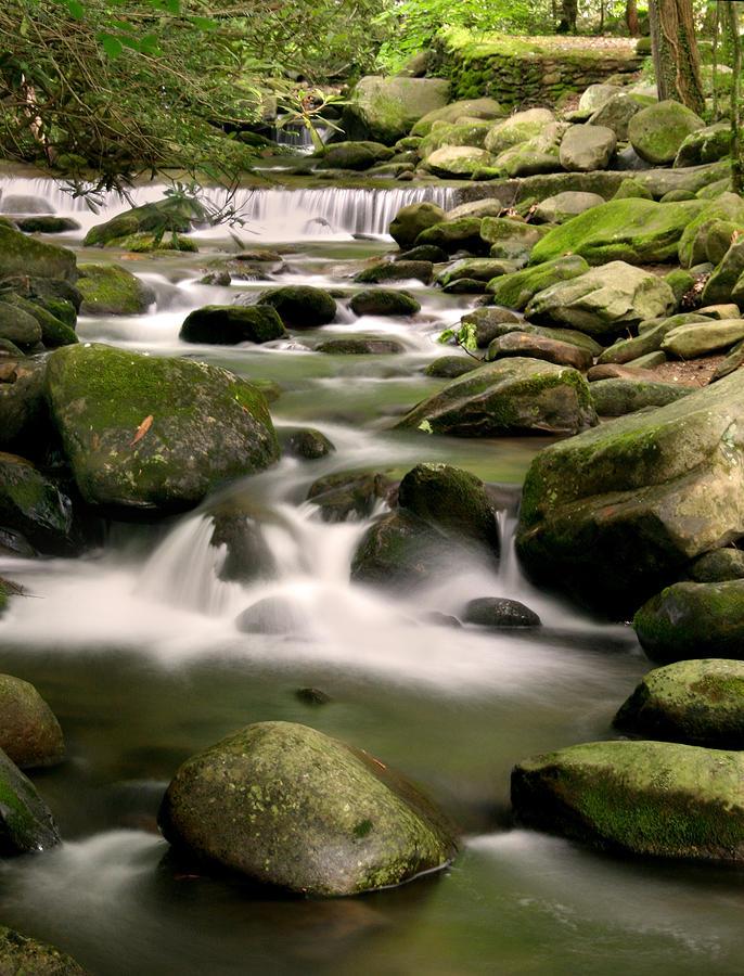 Smoky Mountain Photograph - Smoky Mountain Stream by Cindy Haggerty