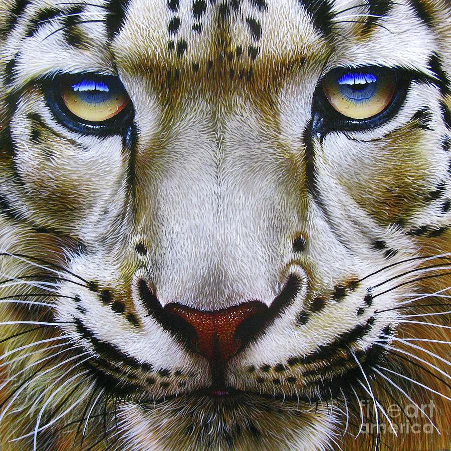 Snow Leopard Painting - Snow Leopard by Jurek Zamoyski