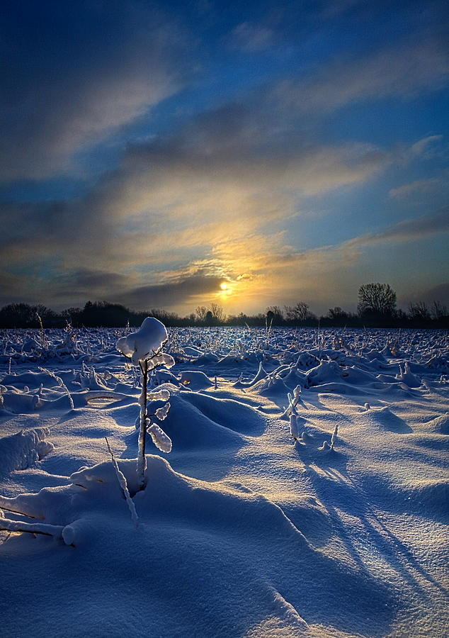 Horizons Photograph - Snow Way by Phil Koch