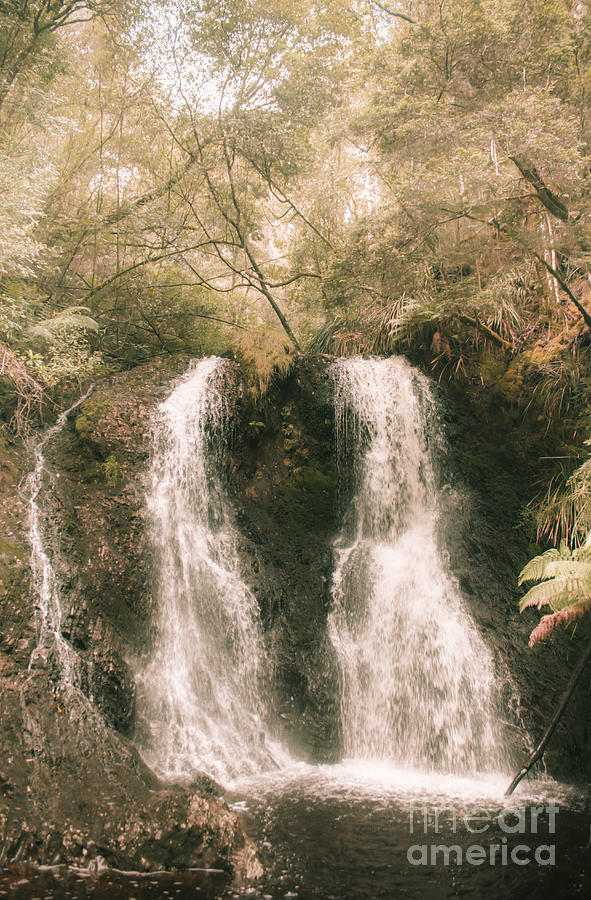 Waterfall Photograph - Soft Vintage Forest Waterfall In Tasmania by Jorgo Photography - Wall Art Gallery