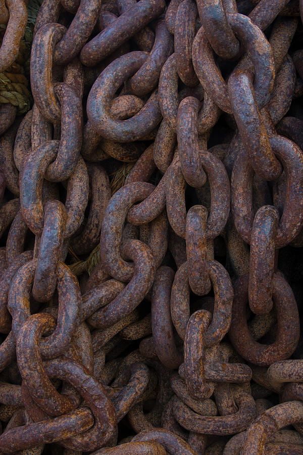Antarctica Photograph - South Georgia Giant Rusted Chains Using by Inger Hogstrom