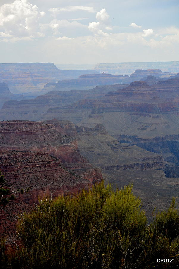 Grand Canyon National Park Photograph - South Rim View by Carrie Putz