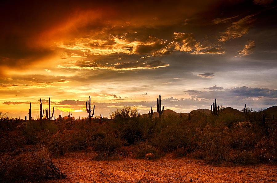 Sunset Photograph - Southwestern Skies  by Saija  Lehtonen