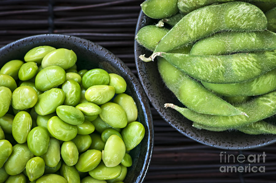 Edamame Photograph - Soy Beans In Bowls by Elena Elisseeva