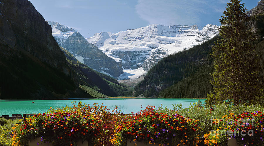 Lake Louise Photograph - Splendor Of Lake Louise by Frank Wicker
