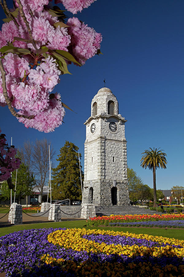 Blenheim Photograph - Spring Blossom And Memorial Clock by David Wall