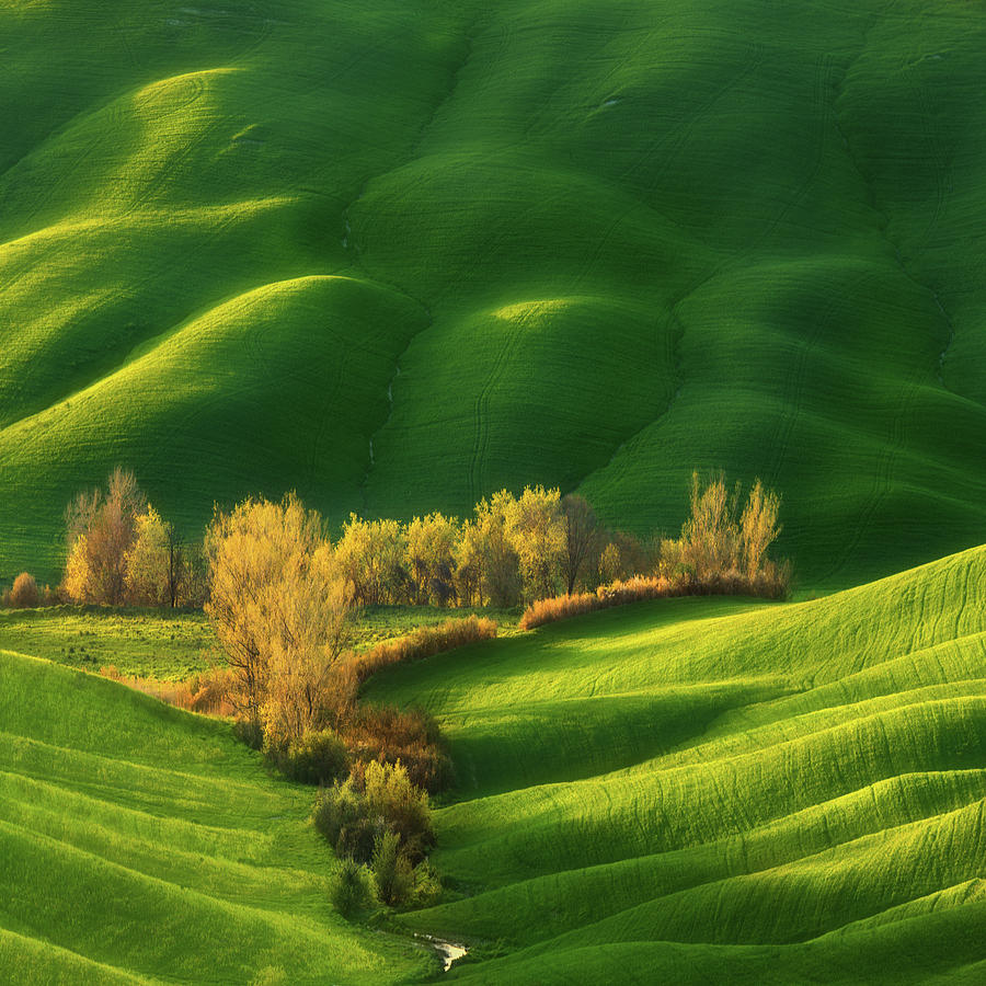 Tuscany Photograph - Spring On Fields... by Krzysztof Browko