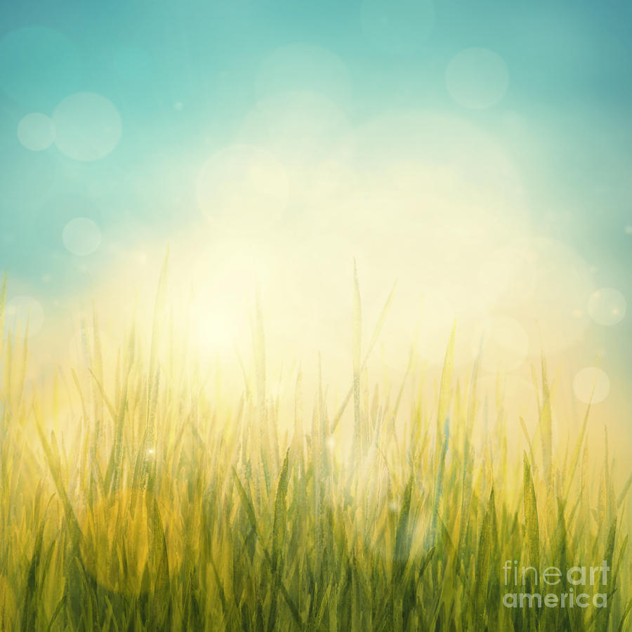 Spring Or Summer Abstract Season Nature Background Digital Art By