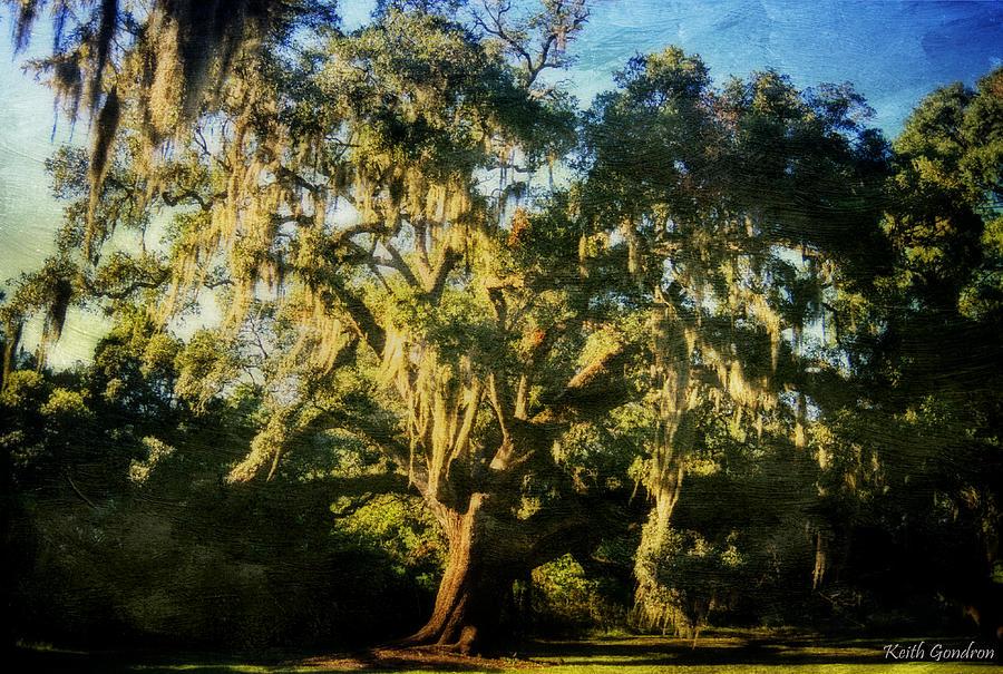 Saint Photograph - St. Gabriel Oak by Keith Gondron