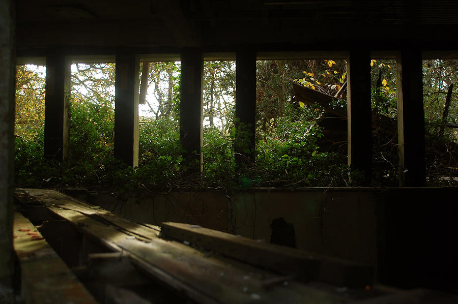 Architecture Photograph - St. Peters Seminary by Peter Cassidy