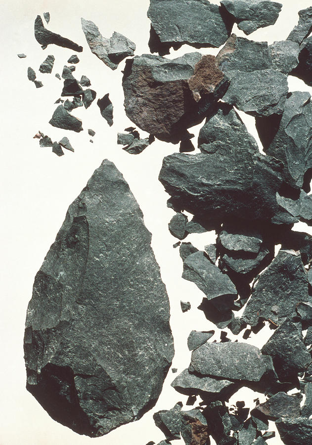 Artifacts Photograph - Stone Tool by John Reader/science Photo Library