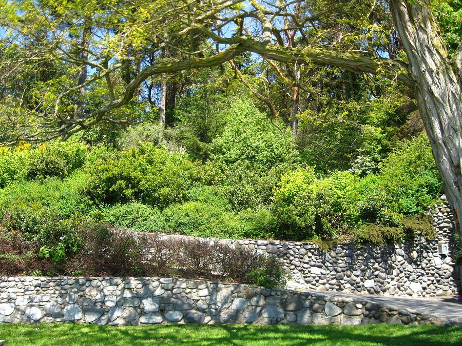 Stone Wall 1 Photograph