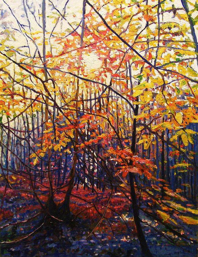 Autumn Painting - Sun Through Trees by Helen White