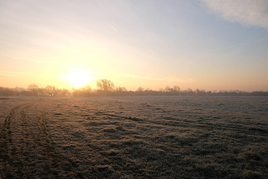 Fog Photograph - Sunrise by Mark Severn