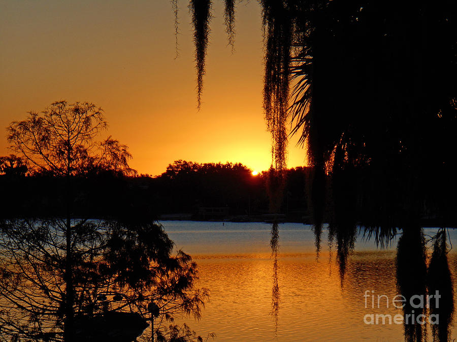 Sunrise on Lake Weir - 1 by Tom Doud