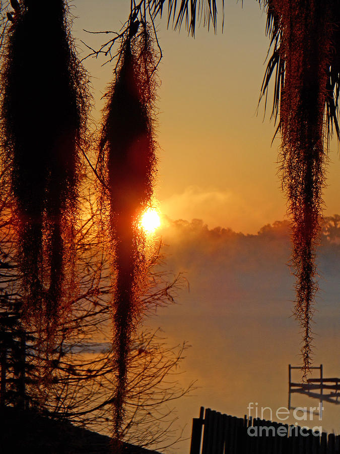 Sunrise on Lake Weir - 3 by Tom Doud