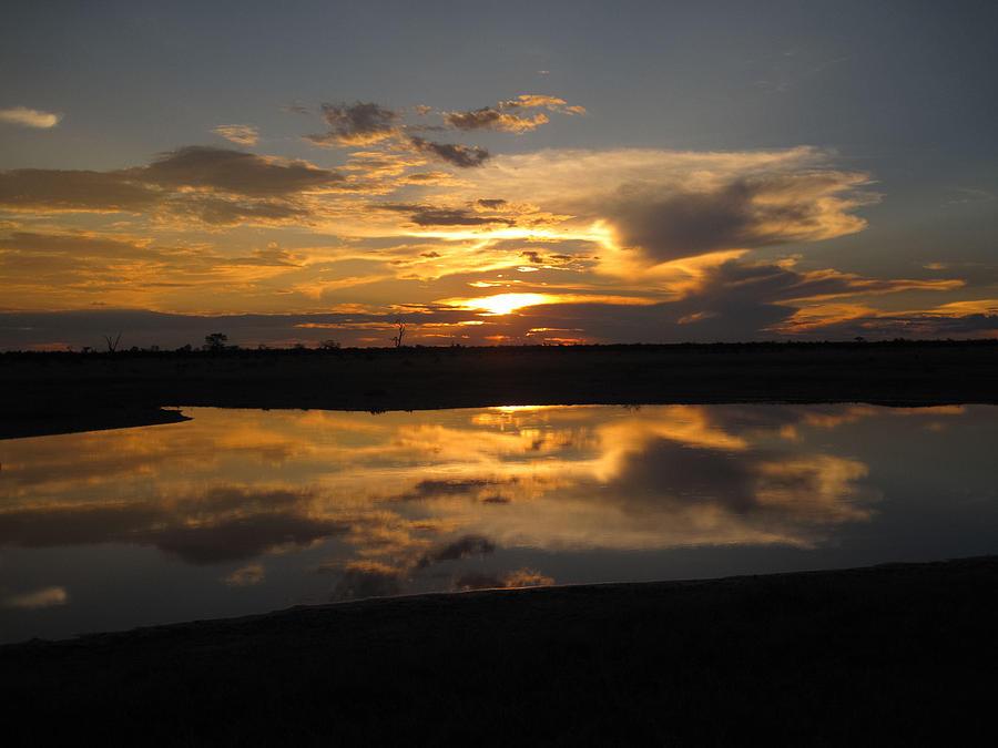 Sunrise Over Savuti Park Photograph by Gregory Daley  MPSA