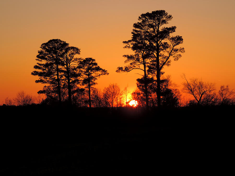 Sunset Photograph - Sunset 7 by Stephanie Kendall