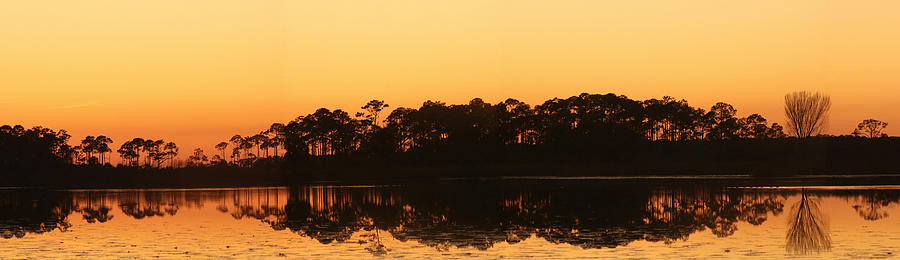 Sunset Photograph - Sunset At St. Marks by Karen Lindquist