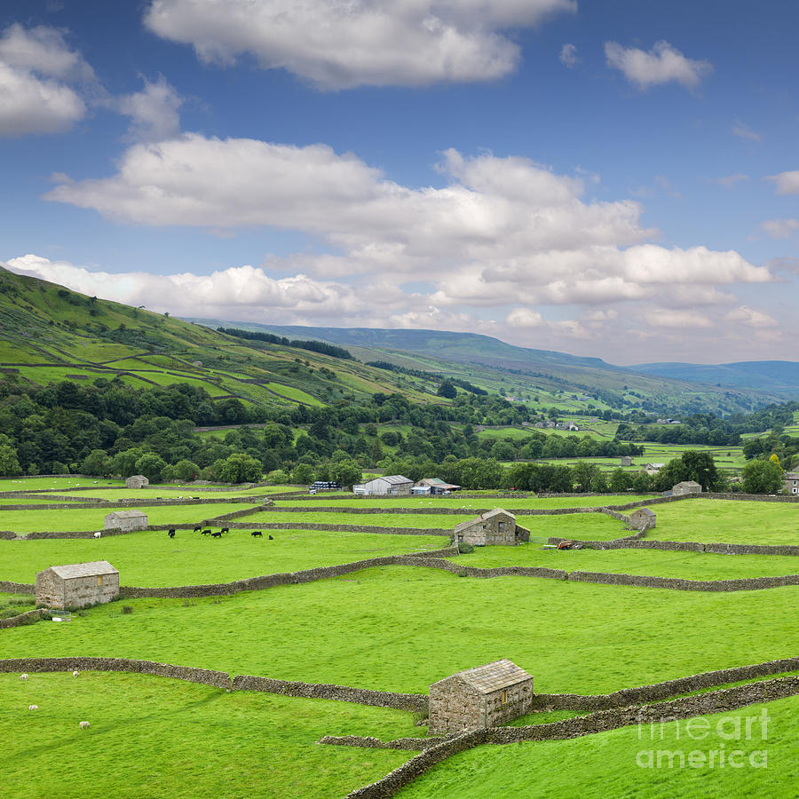Agriculture Photograph - Swaledale Yorkshire Dales England by Colin and Linda McKie