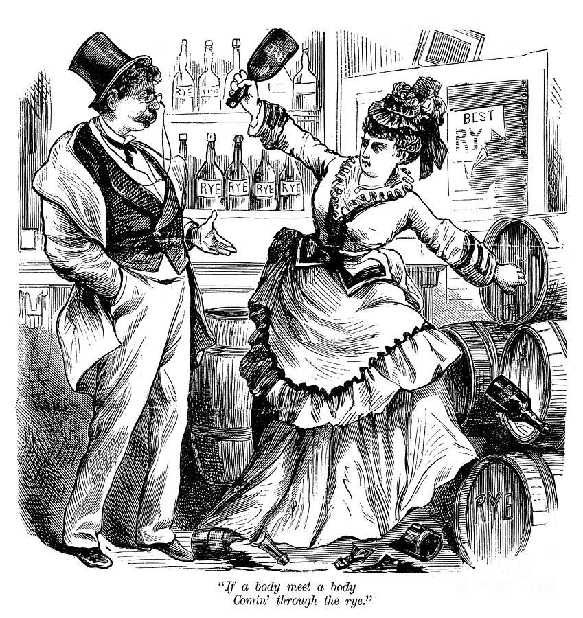 Temperance Movement, 1874 Photograph by Granger