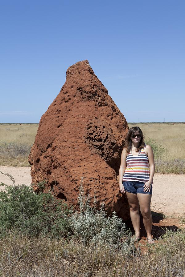 Termite Nest Photograph - Termite Mound, Exmouth Western by Science Photo Library