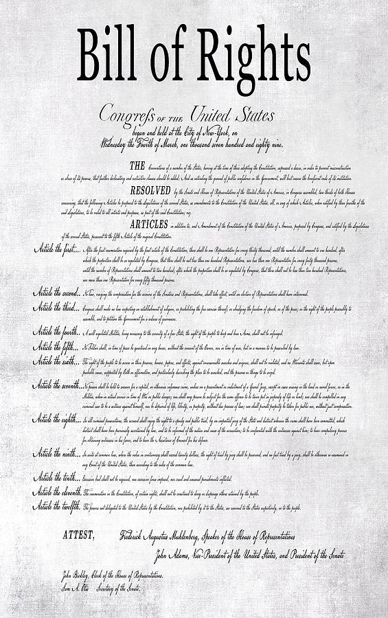 Rights Digital Art - The Bill Of Rights H K by Daniel Hagerman