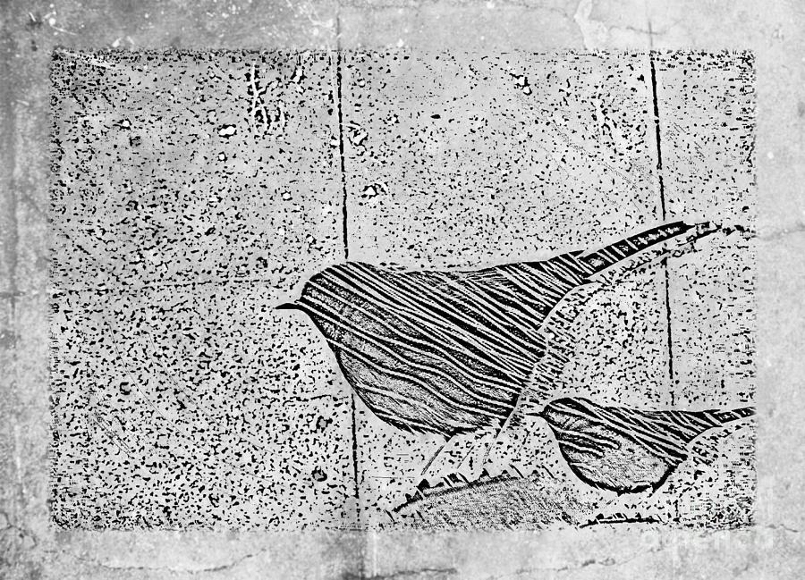 Birds Digital Art - The Birds by Tripti Singh