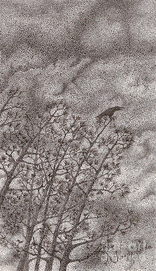 Crows Drawing - The Crow by Wayne Hardee