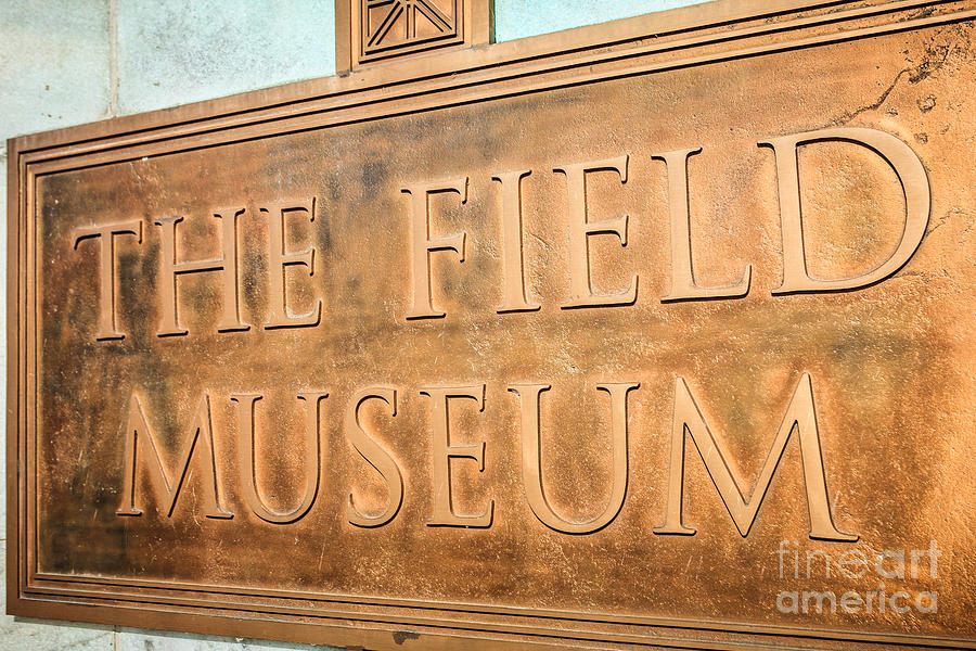 America Photograph - The Field Museum Sign In Chicago Illinois by Paul Velgos