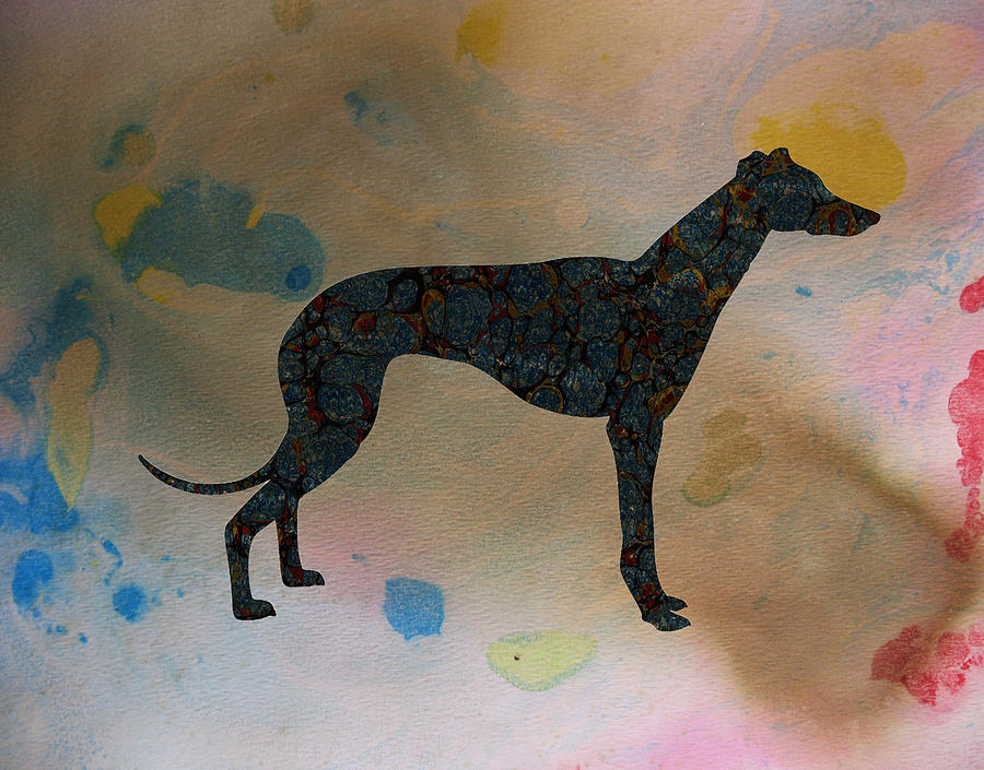 Greyhound Digital Art - The Grey by Celestial Images