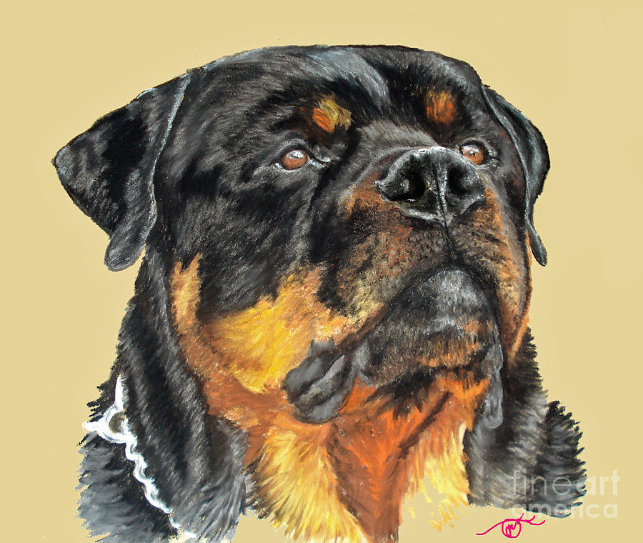 Rottweiler Pastel - The Guardian by Ann Marie Chaffin
