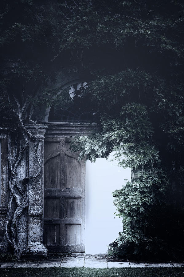 Door Photograph - The Light by Joana Kruse