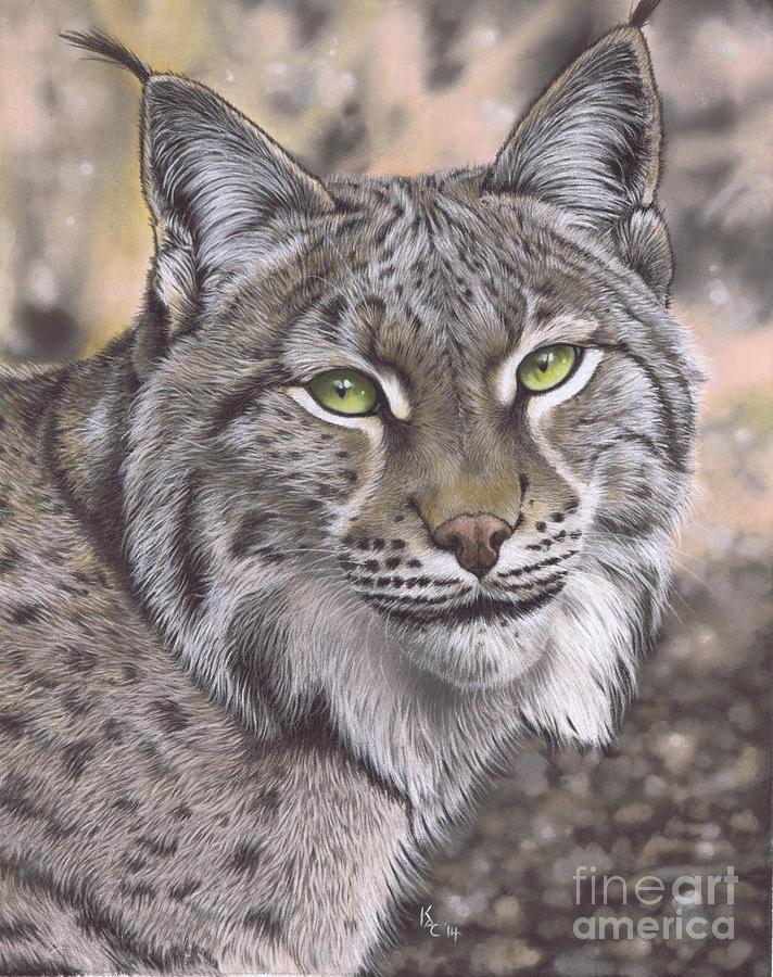 The Lynx Effect Pastel