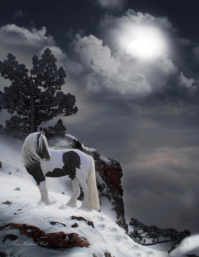 Horse Digital Art - The Rock by Terry Kirkland Cook