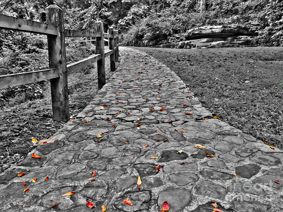 Ahead Photograph - The Stone Path by Bob Mintie