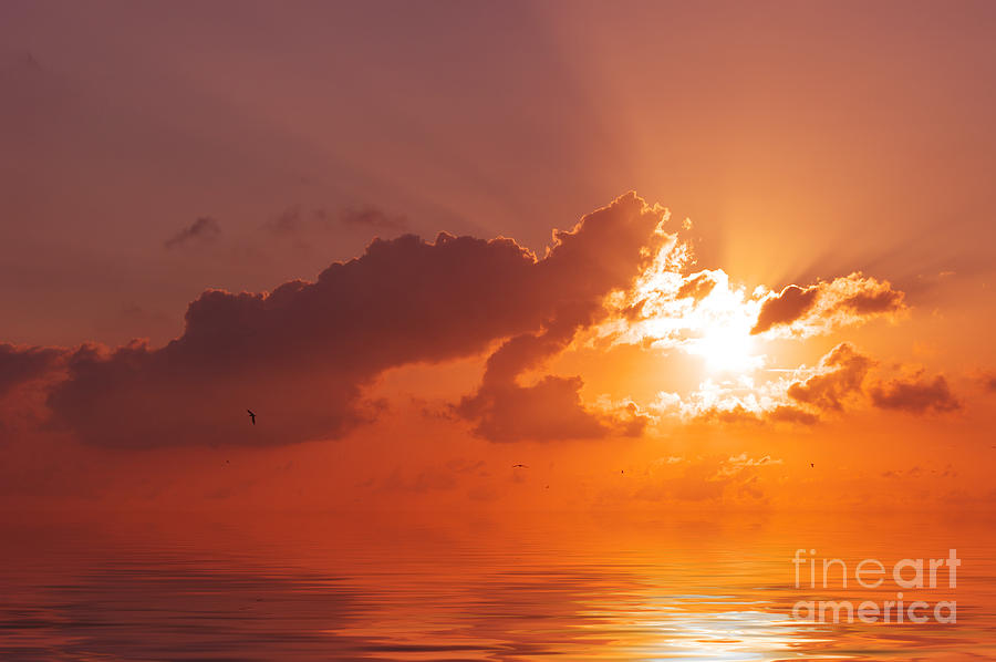 Sun Photograph - The Sunset by Angela Doelling AD DESIGN Photo and PhotoArt