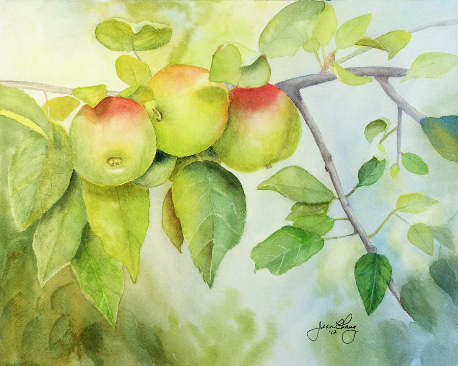 Three Apples by Jean A Chang