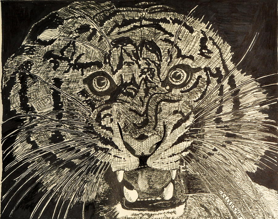 Tiger Drawing - Tiger by Denis Gloudeman
