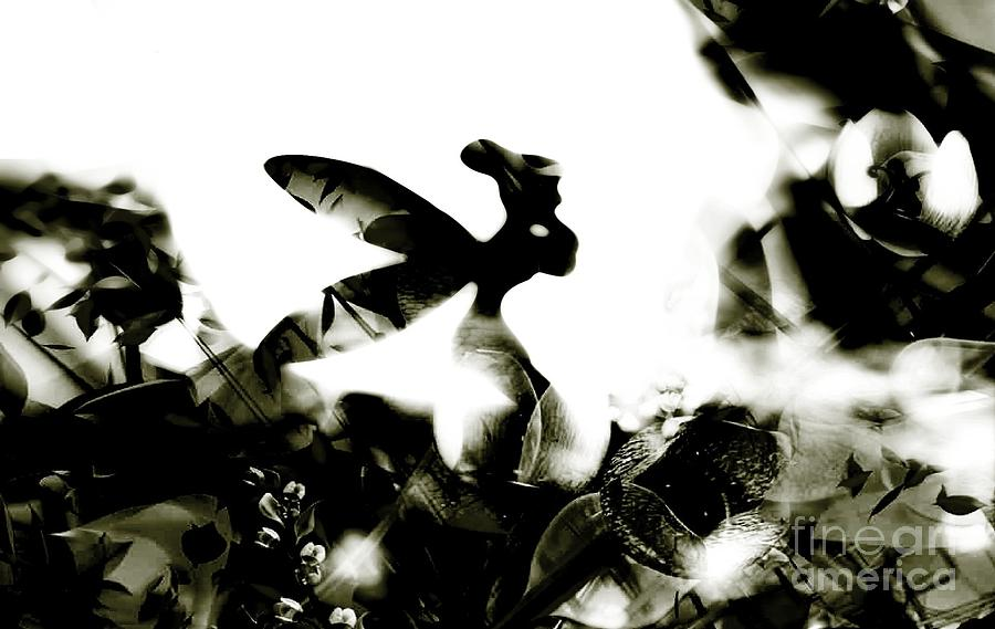 Love Photograph - Tinker Bell by Jessica Shelton