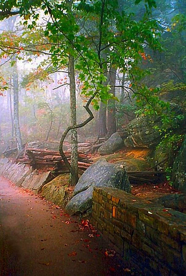 Cumberland Gap Photograph - To The Pinnacle by Julie Dant