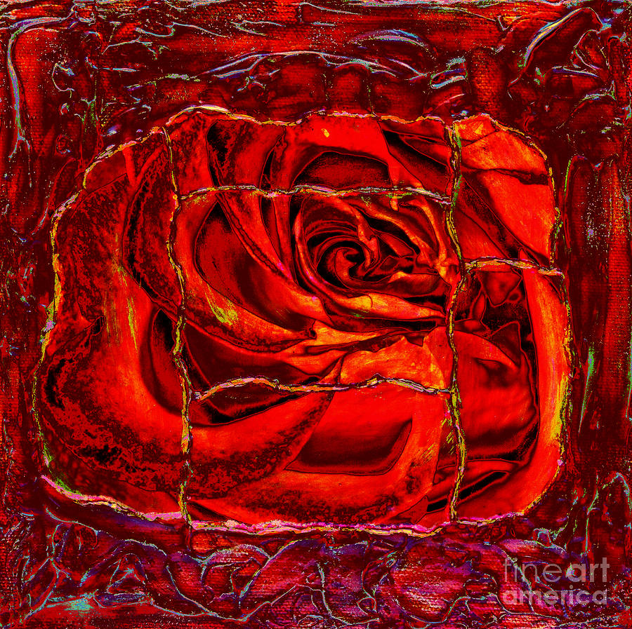 Rose Photograph - Torn Rose by Pattie Calfy