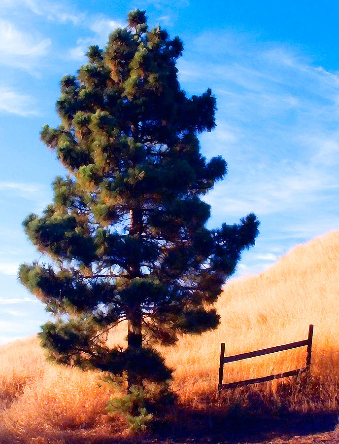 Tree Photograph - Tower Of Strength by Ron Regalado