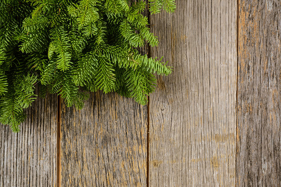 Tree Branch On Rustic Wooden Background Used For Christmas Decor