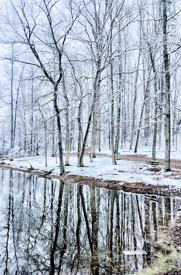 Tree Line Photograph - Tree Line Reflections In Lake During Winter Snow Storm by Alex Grichenko